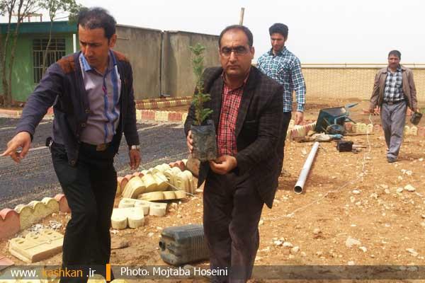 بهداشت و درمان شهرستان رومشکان
