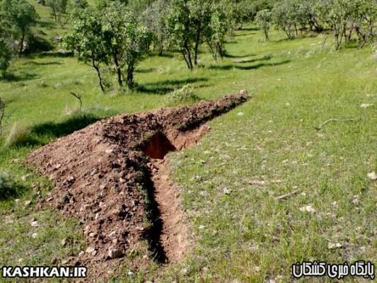 احداث چاله های فل۲سی به منظور  احیا جنگل های  بلوط حوزه شهرستان  کوهدشت-۲