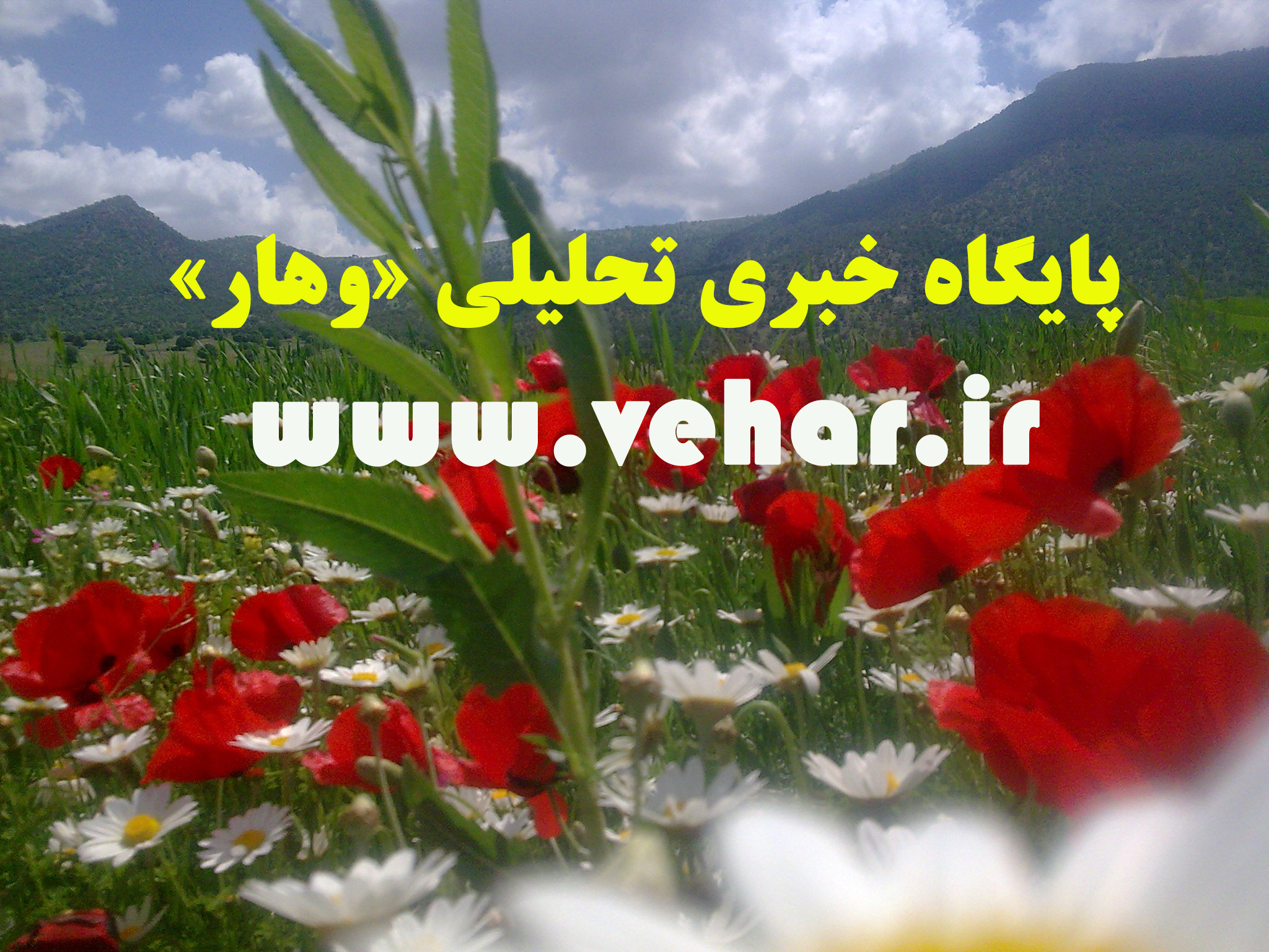 HamMihan-20151245163662964131436524836.1221