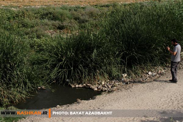bayat azadbakht (9) (1)