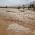 سیل به کشاورزان روستای زرنان خسارت فراوان کرد (۲)
